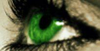 cropped-logoeye.jpg
